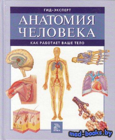 Анатомия человека. Как работает ваше тело - 2007 год - 320 с.