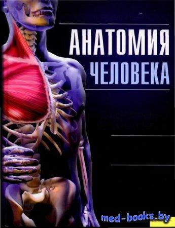 Анатомия человека. Иллюстрированный атлас - Адольфо Кассан - 2011 год