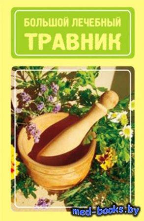 Большой лечебный травник - Иван Дубровин - 2009 год