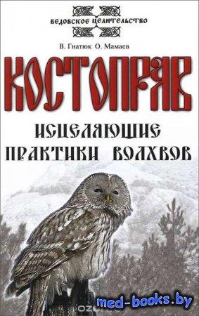 Костоправ. Исцеляющие практики волхвов - О. Мамаев, В. И. Гнатюк - 2014 год