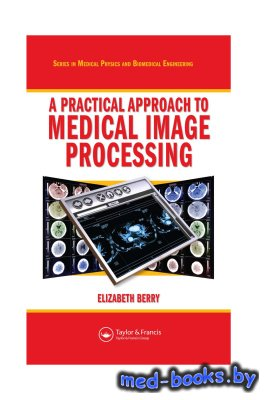 A Practical Approach to Medical Image Processing - Berry E. - 2007 год - 308 с.
