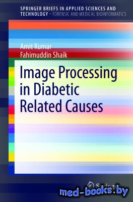 Image Processing in Diabetic Related Causes - Kumar A., Shaik F. - 2016 год - 60 с.