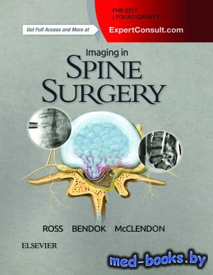 Imaging in Spine Surgery - Ross J.S., Bendok B.R., McClendon J. - 2017 год