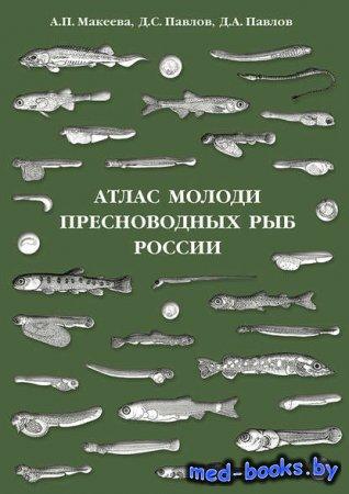 Атлас молоди пресноводных рыб России - Д. С. Павлов, А. П. Макеева, Д. А. П ...