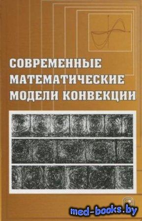 Современные математические модели конвекции - Юрий Гапоненко, Виктор Андрее ...