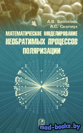 Математическое моделирование необратимых процессов поляризации - А. В. Бело ...