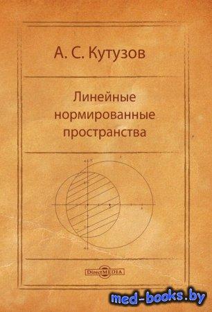 Линейные нормированные пространства - Антон Кутузов - 2014 год