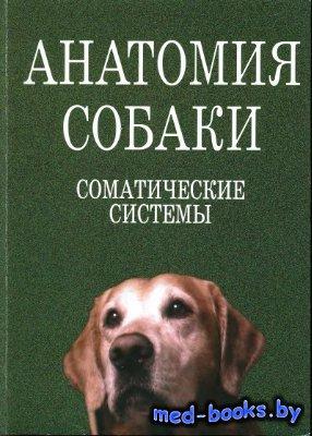 Анатомия собаки. Соматические системы - Слесаренко Н.А., Бабичев Н.В. и др. ...