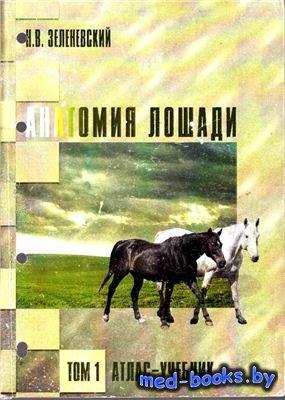 Анатомия лошади (атлас-учебник). Том 1 - Зеленевский Н.В. - 2007 год