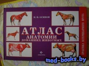 Атлас анатомии домашних животных - Осипов И.П. - 2009 год
