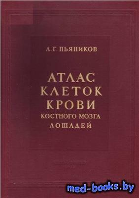 Атлас клеток крови костного мозга лошадей - Пьяников Л.Г. - 1953 год