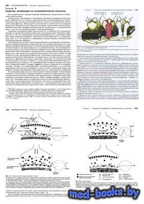 Средства влияющие на холинергические синапсы. Антипсихотические средства (н ...
