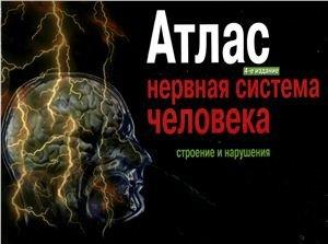 Атлас. Нервная система человека. Строение и нарушения - Астапов В.М., Микадзе Ю.В. - 2004 год - 80 с.