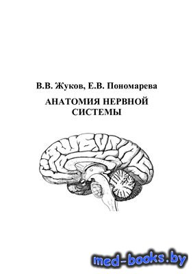 Анатомия нервной системы - Жуков В.В., Пономарева Е.В. - 1998 год - 68 с.