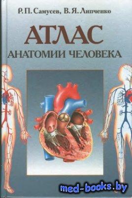 Атлас анатомии человека - Самусев Р.П., Липченко В.Я. - 2003 год - 320 с.
