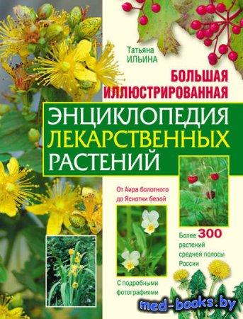Большая иллюстрированная энциклопедия лекарственных растений - Т. А. Ильина ...
