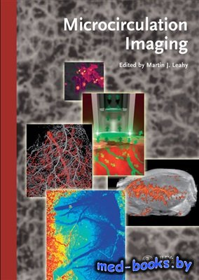 Microcirculation Imaging - Leahy M.J. - 2012 год - 407 с.