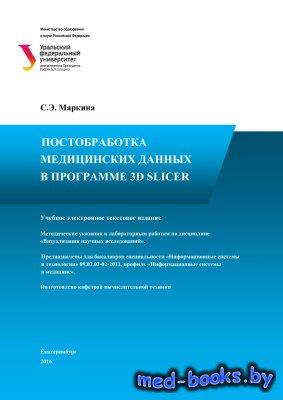 Постобработка медицинских данных в программе 3D Slicer - Маркина С.Э. - 2016 год