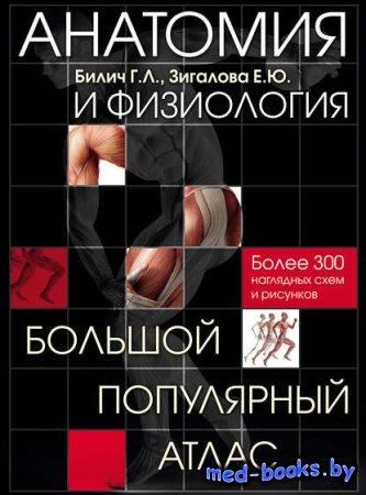Анатомия и физиология. Большой популярный атлас - Г. Л. Билич, Е. Ю. Зигало ...