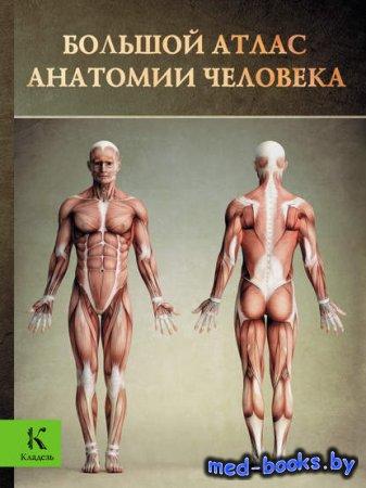 Большой атлас анатомии человека - Винсент Перез - 2006 год