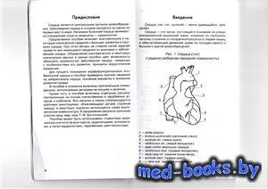 Анатомия сердца (в схемах и рисунках) -  Крылова Н.В. - 2006 год - 96 с.