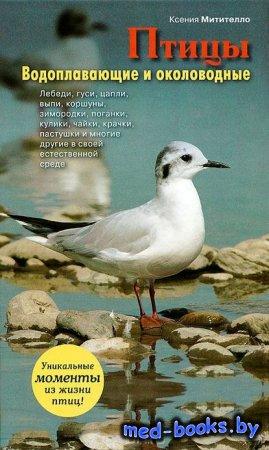 Птицы. Водоплавающие и околоводные - Ксения Митителло - 2012 год
