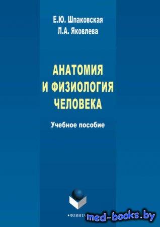 Анатомия и физиология человека - Л. А. Яковлева, Е. Ю. Шпаковская - 2015  год