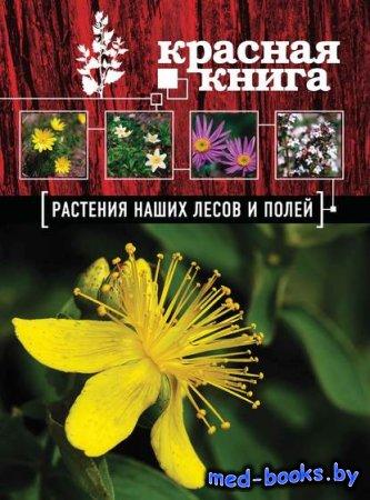 Красная книга. Растения наших лесов и полей - Анна Орел - 2013 год
