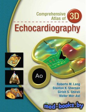 Comprehensive Atlas of 3D Echocardiography - Lang R.M., Shernan S.K. - 2013 ...