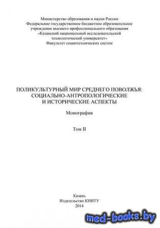 Поликультурный мир Среднего Поволжья: социально-антропологические и исторические аспекты. Том 2 - Коллектив авторов