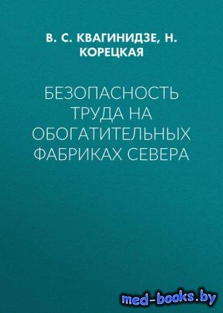 Безопасность труда на обогатительных фабриках Севера - Н. Корецкая, В. С. К ...