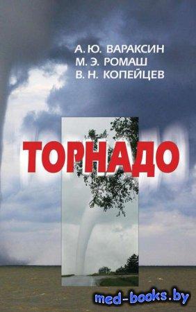 Торнадо - А. Ю. Вараксин, В. Н. Копейцев, М. Э. Ромаш - 2016 год