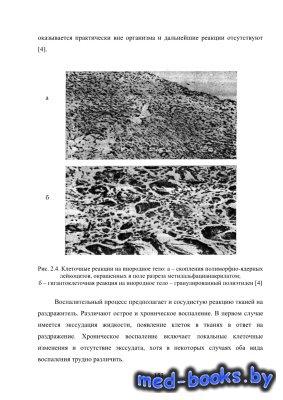 Биомедицинское материаловедение. Ч. 1. Общие свойства материалов и их совме ...