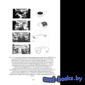 Биомедицинское материаловедение. Ч. 2. Материалы для эндопротезирования и в ...