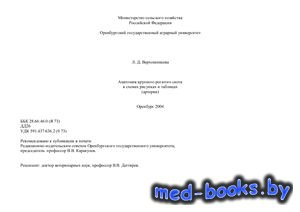 Анатомия крупного рогатого скота в схемах, рисунках и таблицах (артерии) -  ...