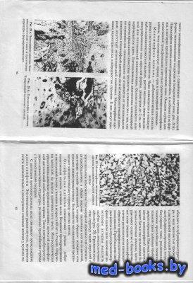 Клиническая патология орофациальной области и шеи - Зиновьев А.С., Кононов  ...