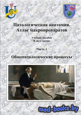 Патологическая анатомия. Атлас макропрепаратов. Часть 1. Общепатологические ...