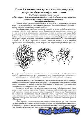 Абсцессы, флегмоны головы и шеи - Соловьев М.М., Большаков О.П. - 2001 год