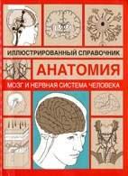 Мозг и нервная система человека. Иллюстрированный справочник - Борисова И.А ...