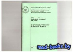 Очерки хирургической анатомии живота - Смирнов А.А. - 2013 год