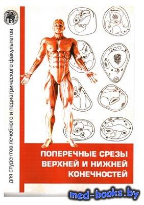 Поперечные срезы верхней и нижней конечностей - Волков А.В. - 2013 год