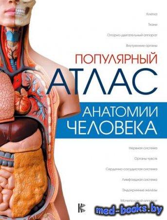 Популярный атлас анатомии человека - Н. В. Лазарев, Л. Н. Палычева - 2018 год