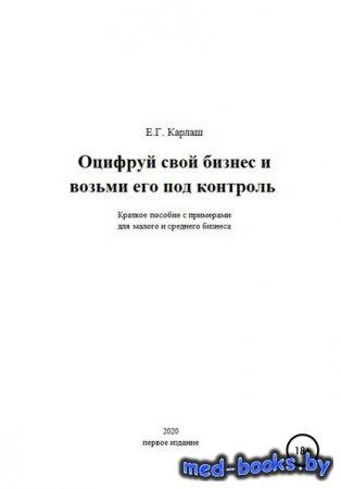 Оцифруй свой бизнес и возьми его под контроль - Екатерина Генриховна Карлаш ...